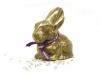 paul-bunny